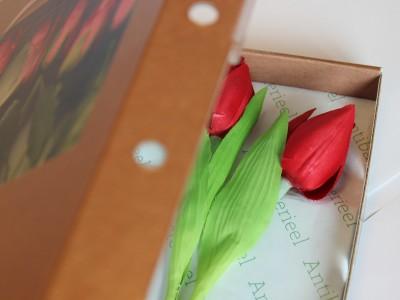 Active flower packaging SmartFlowerPack  KCPK